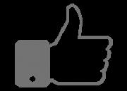 icone-seguidores